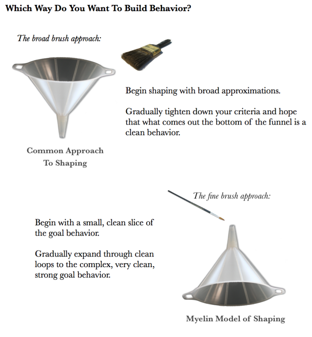 funnel images of shaping