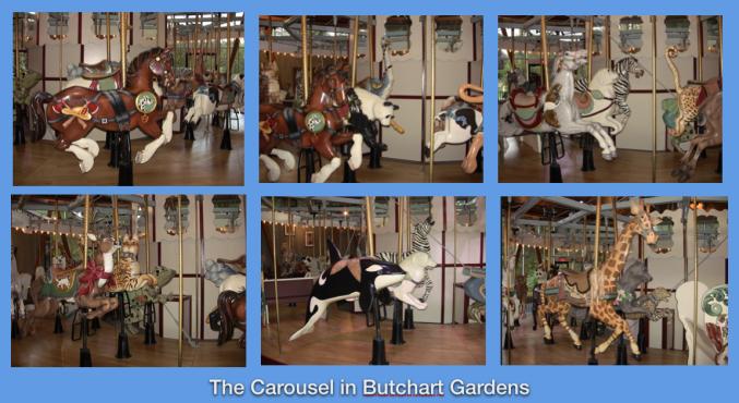 carousel butchart 2