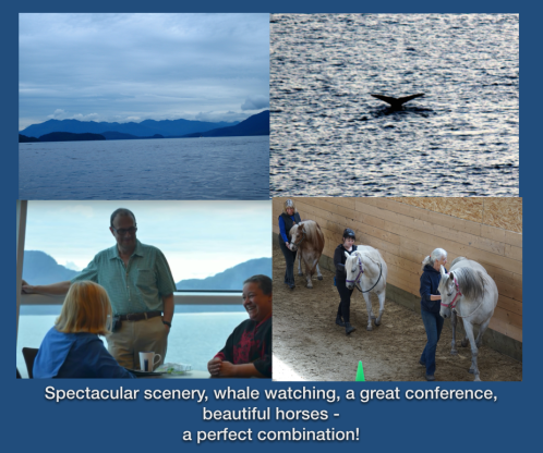 scenery whales conference horses