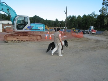 IMG_1991 Panda Ann construction
