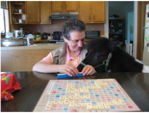 Panda Ann Scrabble