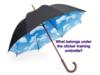 clicker umbrella 1