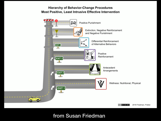 Dr. Susan Friedman's Hierarchy of interventions