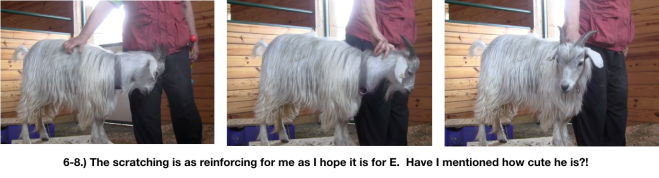 Goat Diaries Day 4 - E on 2 platforms - pt. 2 - panel 5.png