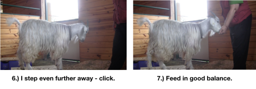 Goat Diaries Day 4 - E on 2 platforms - pt. 2 - panel 9.png