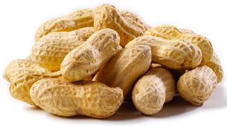 peanuts1.png
