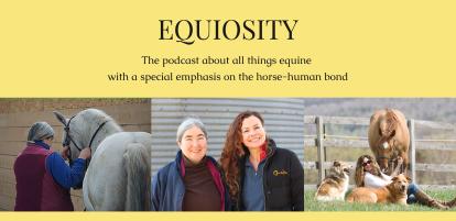 Equiosity banner for blog
